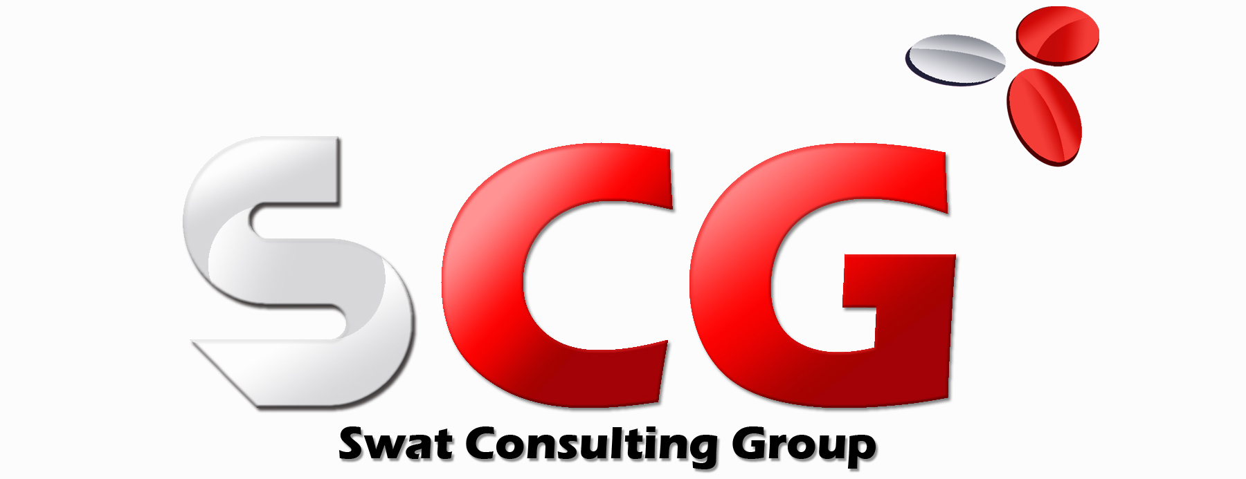 Swat Consulting Group